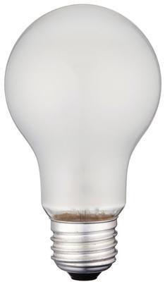 60 Watt A19 Incandescent Vibration Resistant Light Bulb