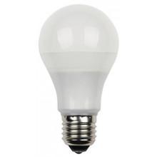10 Watt Omni Dimmable LED Light Bulb