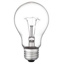 60 Watt A19 Incandescent Vibration Resistant Clear Light Bulb