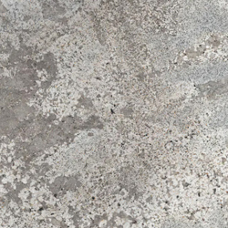 Bianco Antico Z Natural Stone Countertop Sample
